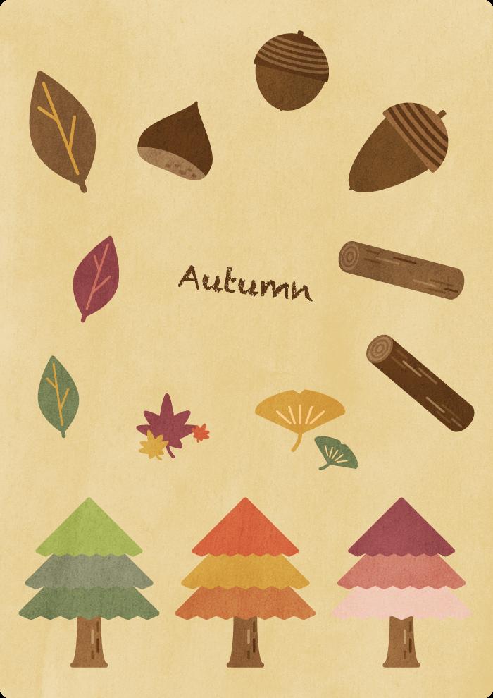 秋セット1
