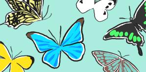 catch_butterfly