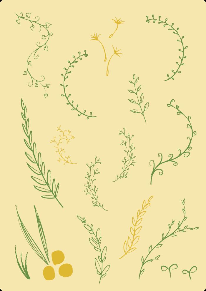 手書き植物セット2